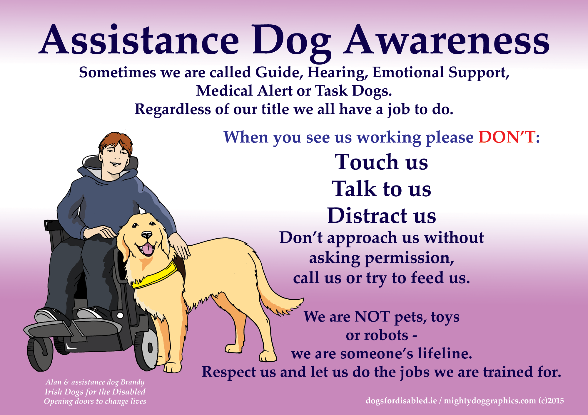 Assistance Dog awareness
