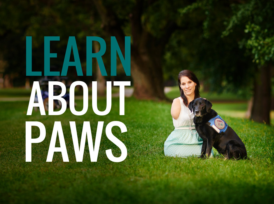 Learn about Paws