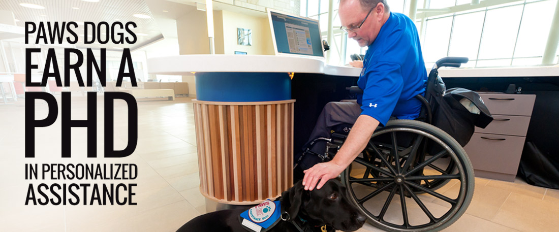 Paws dogs earn a PHD in personalized assistance