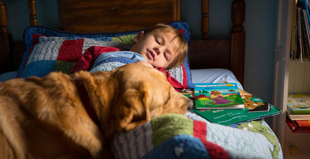 Service Dogs For Children With Autism Paws With A Cause