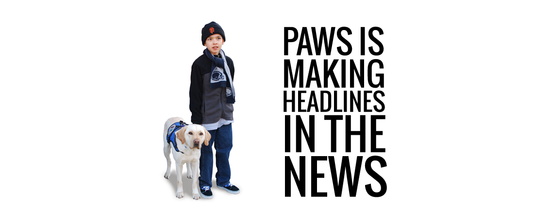 Paws is making headlines in the news