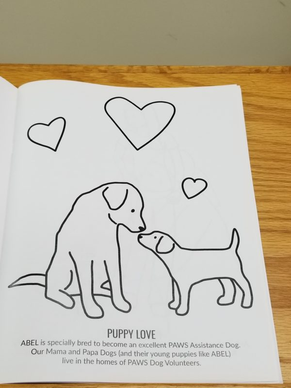 A PAWS Team Journey Coloring Book